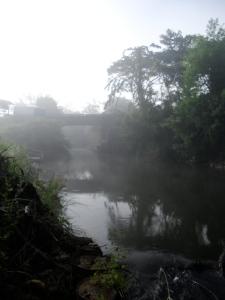 Fog in Tak